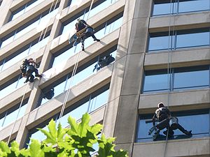 Head for heights - Three high-rise window cleaners at work