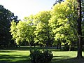 783 25 Bouzov, Czech Republic - panoramio (3).jpg