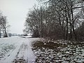 930 12 Ohrady, Slovakia - panoramio - Laci30 (29).jpg