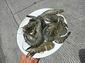 9597Cuisine food of Bulacan 30.jpg