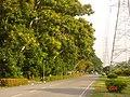AIT - panoramio - Seksan Phonsuwan (51).jpg
