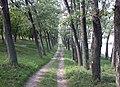 ALEIA - panoramio.jpg