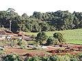 ATERRO PAULINHO - panoramio (1).jpg