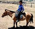 A mongolian boy riding a horse.jpg
