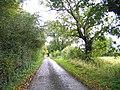 A quiet Suffolk Lane near Bruisyard - geograph.org.uk - 72691.jpg