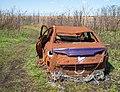 Abandoned car at the Salt Marsh (10835).jpg