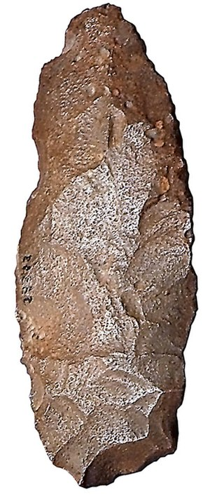 Later Stone Age - African biface (scraper/cutting tool) dated to the Later Stone Age.