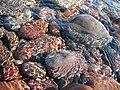 Agate beach, keewanaw peninsula.jpg