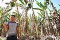 Agricultores rurais recebem mais de R$ 300 mil em cartas de crédito do Prospera DF (27867214481).jpg