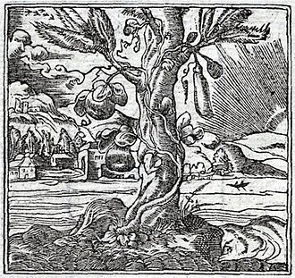 The Gourd and the Palm-tree - The emblem of the gourd in the Lyon edition of Andrea Alciato's Emblemata (1550)