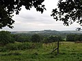 Alderbury - Pastureland between Village and Church - geograph.org.uk - 592289.jpg