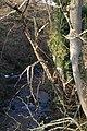 Ale Water, Eyemouth Berwickshire - geograph.org.uk - 689594.jpg
