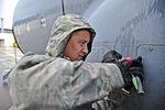 Allied Forge 2014 140525-F-AB151-120.jpg