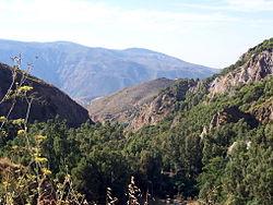 Alpujarras1.jpg