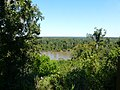 Apalachicola River Bluffs behind Gregory House - Sept 30 2020.jpg