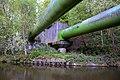 Apperley Bridge to Esholt (34570656426).jpg