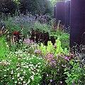 Arboretum Ellerhoop - Purpurne Impressionen.jpg