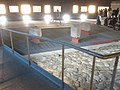 Area archeologica la Fenice di Senigallia - 20120121 - 06 - Vista 2.jpg
