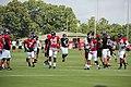Atlanta Falcons training camp July 2016 IMG 7528.jpg