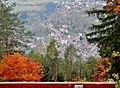 Ausblick auf Wildberg - panoramio (1).jpg