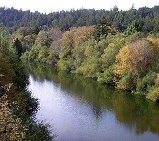 Austin Creek stream in Sonoma County, California