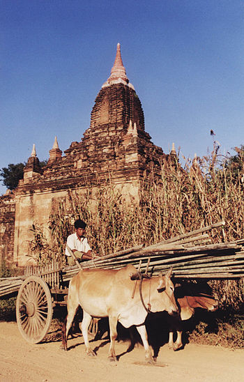 English: Bagan, Burma (Myanmar)