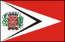BandeiraTarumã.png