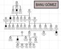 Banu Gómez.png