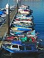 Barcos Marin 2006.jpg