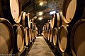 Barrels Of Wine (157454113).jpeg