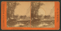 Beautiful landscape, Yo Semite Valley, California , by Pond, C. L. (Charles L.).png