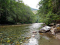 Beckler River.jpg