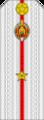 Belarus MIA—10 Junior Lieutenant rank insignia (White).png