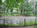 Berlin-Frohnau Ludwig-Lesser-Park Teich.JPG