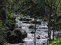 Biała River13.JPG