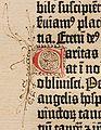 Biblia de Gutenberg, 1454 (Letra C) (21836069345).jpg