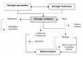 Biologia sistêmica roots.png