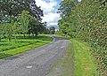 Birr Castle grounds - geograph.org.uk - 1361921.jpg