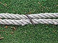 Bishop's Stortford Cricket Club boundary rope 1.jpg
