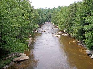 Blackwater River (West Virginia) - The Blackwater River in Blackwater Falls State Park