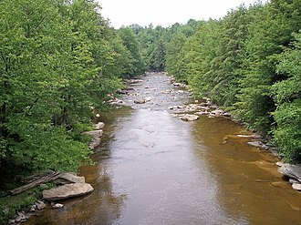 Blackwater River (West Virginia) - The Blackwater River in Blackwater Falls State Park