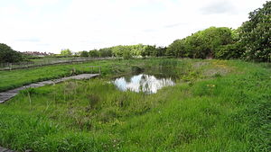 Blondin Park - Image: Blondin Park nature reserve 6