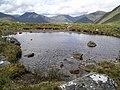Bog pool, E ridge of Gairich - geograph.org.uk - 188068.jpg