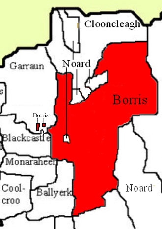Borris, Twomileborris - Borris townland, showing that it contains an enclave of Noard townland, is bounded on the north by other exclaves of Noard townland and has two exclaves of its own located to the west in Garraun townland