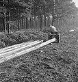 Bosbewerking, arbeiders, boomstammen, landbouwmachines, werktuigen, sleepwerkzaa, Bestanddeelnr 253-4011.jpg