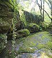Bosque - Bertamirans - Rio Sar - 010.jpg