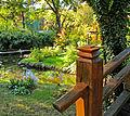 Botanička bašta Jevremovac, Beograd - Japanski vrt 23.jpg