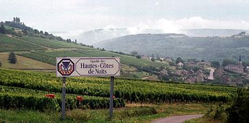 Bourgogne-haute-cote-des-nuits.jpg