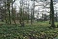 Bowers Wood - geograph.org.uk - 1107923.jpg
