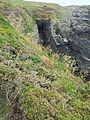 Brandungshöhle bei St. Davids, Pembrokeshire.jpg
